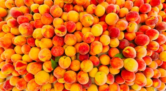 Peach「USA, New York City, Heap of peaches」:スマホ壁紙(14)