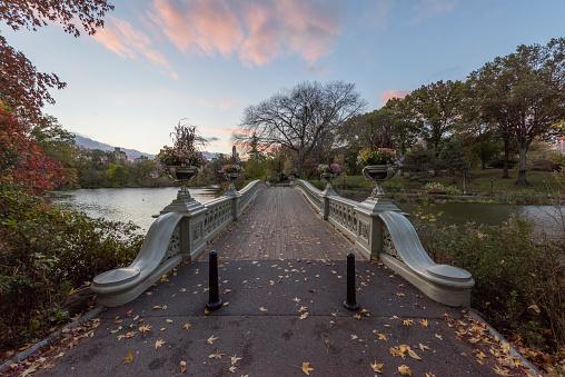 Footbridge「USA, New York City, Manhattan, bridge in Central Park」:スマホ壁紙(2)