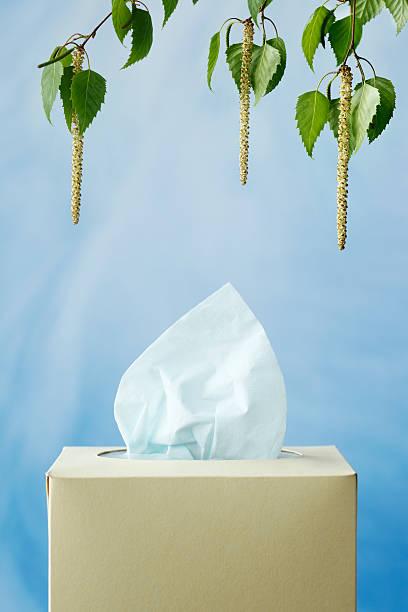 Allergy:スマホ壁紙(壁紙.com)