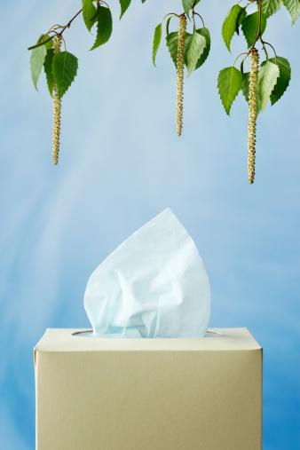 Allergy「Allergy」:スマホ壁紙(17)