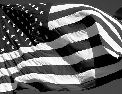 Fourth of July「American Flag In Black and White」:スマホ壁紙(10)