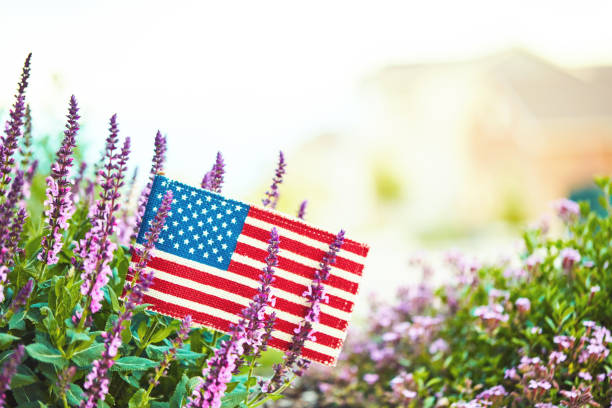 American flag in nature with copy space:スマホ壁紙(壁紙.com)