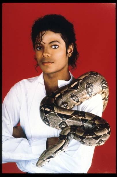 Michael Jackson - With Pet Snake:ニュース(壁紙.com)