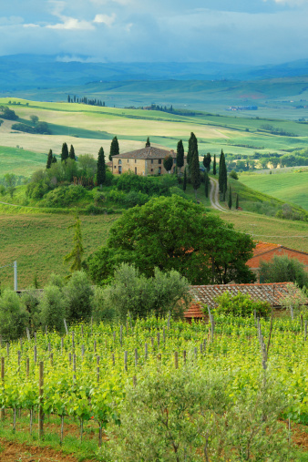 Chianti Region「Farm in Tuscany」:スマホ壁紙(17)