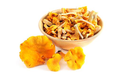 Fungus Gill「chanterelle or golden chanterelle- Pfifferling oder Eierschwamm (Cantharellus cibarius)」:スマホ壁紙(16)