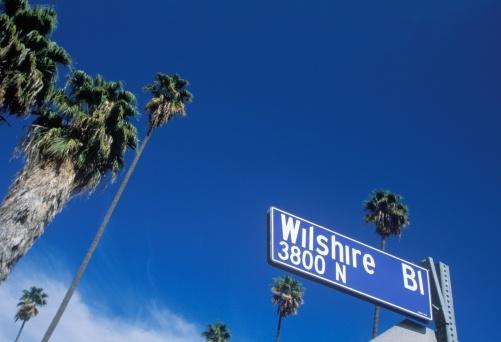 Boulevard「A sign that reads ?Wilshire Bl?」:スマホ壁紙(3)