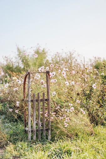 Sled「Sledge in cottage garden」:スマホ壁紙(3)