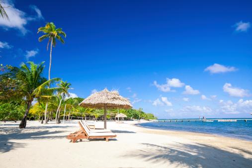 Roatan「Chairs on tropical beach」:スマホ壁紙(6)
