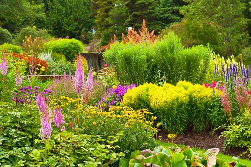 Front or Back Yard「Lavish Garden」:スマホ壁紙(14)