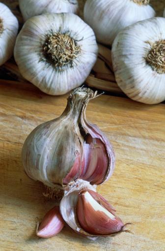 Garlic Clove「Garlic head」:スマホ壁紙(11)