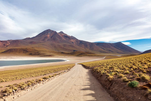 Laguna Miscanti located in Atacama desert at 4,140m altitude, Chile, January 19, 2018:スマホ壁紙(壁紙.com)