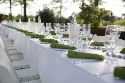 Party - Social Event「Festive laid table with green napkins and wine glasses」:スマホ壁紙(18)