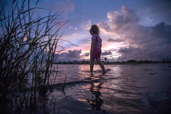 Shallow「Florida Gulf Coast Prepares For Tropical Storm Hermine」:写真・画像(13)[壁紙.com]