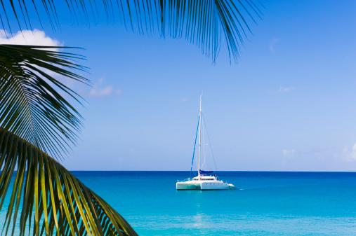 Barbados「Catamaran in the Caribbean」:スマホ壁紙(15)