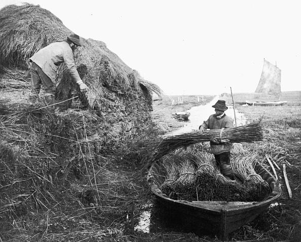 1880-1889「Reed Ricking」:写真・画像(17)[壁紙.com]