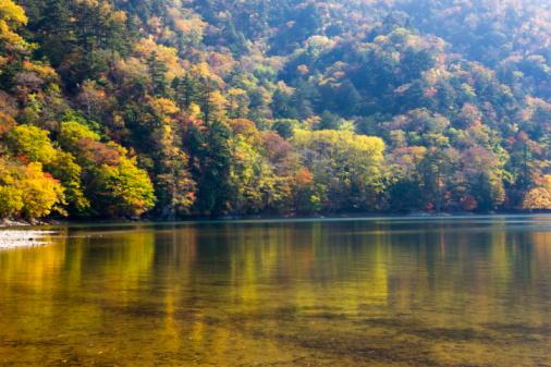 Nikko City「Lake Nishino and forest in autumn, Nikko city, Tochigi Prefecture, Honshu, Japan」:スマホ壁紙(5)