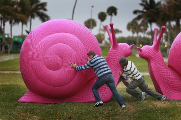 カタツムリ「Vandals Targeting Pink Snail Art Installations Throughout Miami」:写真・画像(18)[壁紙.com]