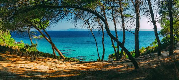cloud「ビーチと海の海岸。Portokali ビーチ、パイン フォレスト、シトニア、半島ハルキディキ、ギリシャからの眺め」:スマホ壁紙(2)