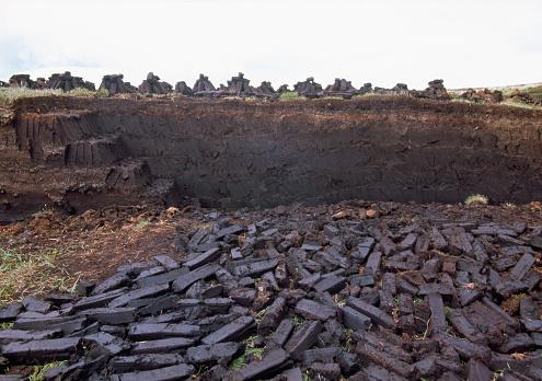 Peat「Landscape with peat near Sally Gap」:スマホ壁紙(13)