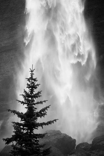 San Juan Mountains「landscape waterfall tree black and white」:スマホ壁紙(19)