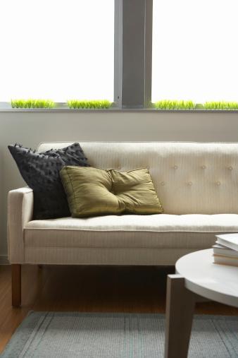 セレクティブフォーカス「Sofa and coffee table in living room」:スマホ壁紙(17)