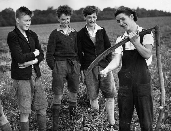 Sharpening「Farming Lesson」:写真・画像(11)[壁紙.com]