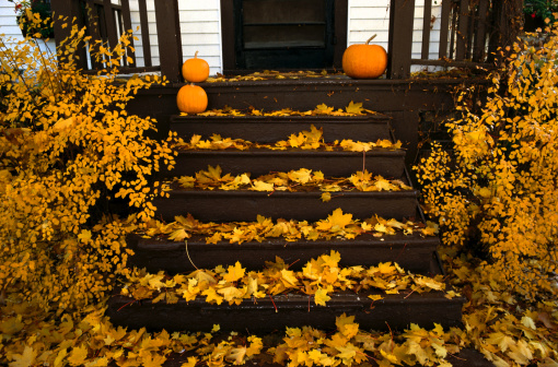 Maple Leaf「Porch with pumpkins and autumn leaves」:スマホ壁紙(3)
