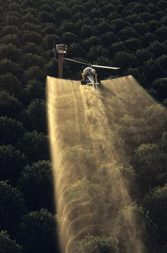 Spraying「Crop dusting an orange grove」:スマホ壁紙(9)