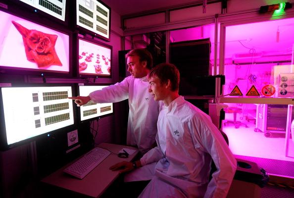 Engineering「Scientists Hope To Grow Salad In Space」:写真・画像(4)[壁紙.com]