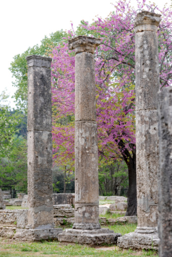 Olympia - Washington State「three ionic columns from Theokoleon at Ancient Olympia」:スマホ壁紙(7)