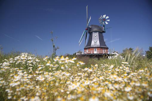 Focus On Background「windmill」:スマホ壁紙(14)