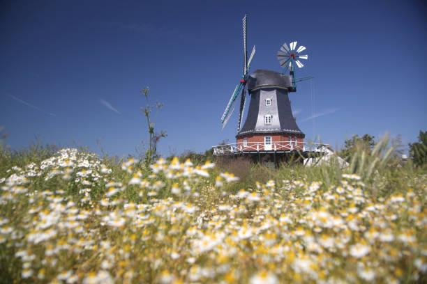 windmill:スマホ壁紙(壁紙.com)