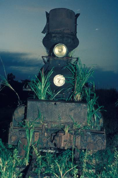 The amazing Insular Lumber Company's 4 cylinder compound 0-6-6-0 Baldwin Mallet No. 7 abandoned on the Philippine island of Negros. Thursday 17th December 1981.:ニュース(壁紙.com)