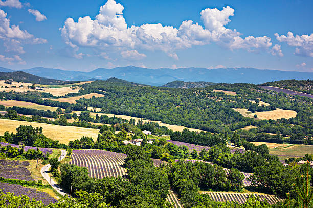 Provence landscape:スマホ壁紙(壁紙.com)