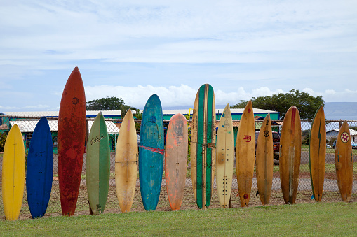 サーフィン「Row of antique surfboards along a fence」:スマホ壁紙(13)