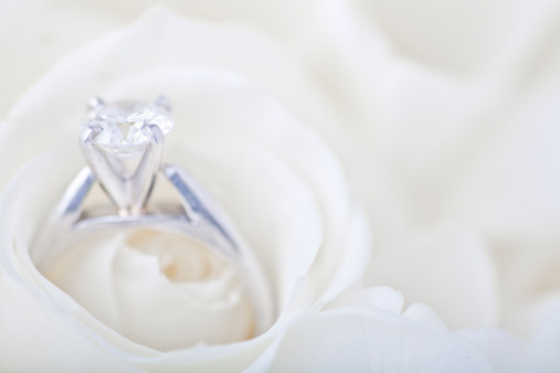 Extreme Close-Up「Engagement ring in white rose」:スマホ壁紙(5)