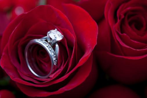 結婚「婚約指輪レッドのローズ」:スマホ壁紙(18)