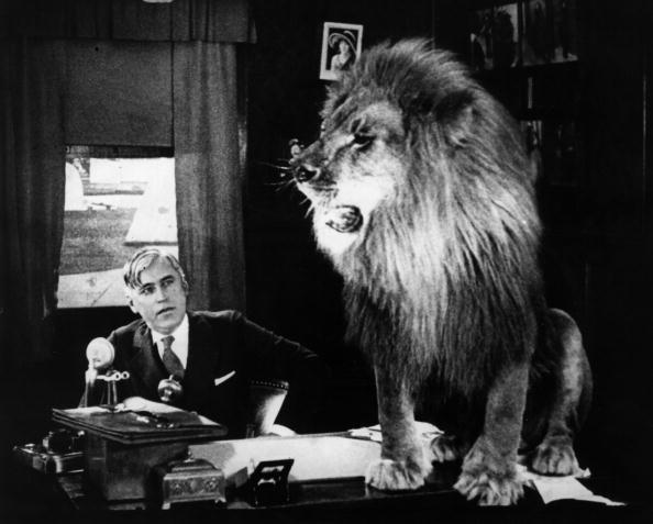 Skill「Mack Sennett」:写真・画像(17)[壁紙.com]