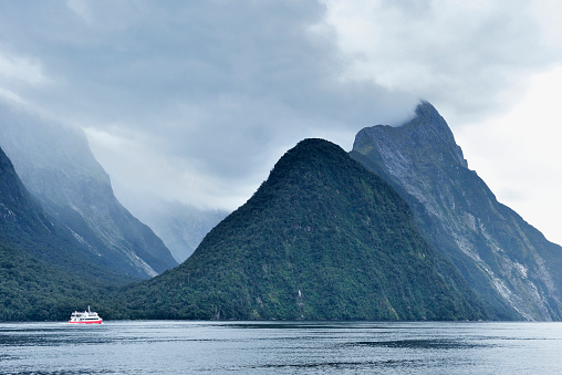 Cruise - Vacation「Milford Sound, New Zealand」:スマホ壁紙(11)