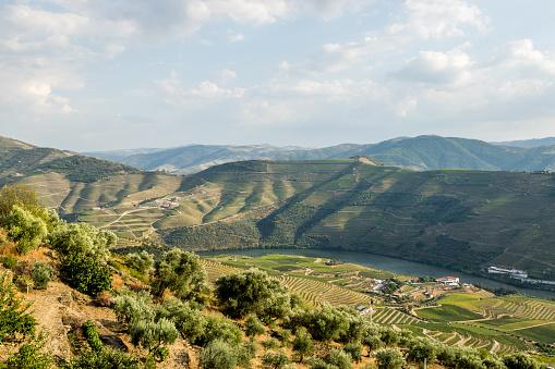 UNESCO「Douro valley at sunset.」:スマホ壁紙(16)
