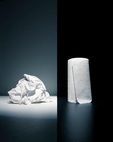 Evil「Cloth rags vs. paper towel」:スマホ壁紙(0)