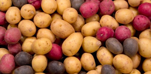 Red Potato「Potatoes」:スマホ壁紙(7)