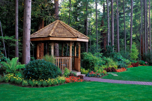 North America「A beautiful backyard garden with a cedar wood gazebo」:スマホ壁紙(8)