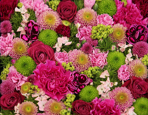 Beautiful bunch of colorful flowers:スマホ壁紙(壁紙.com)