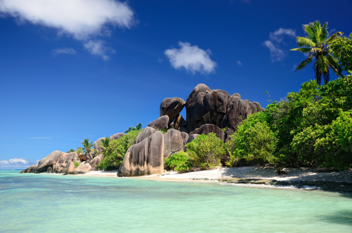 Indian Ocean「A beautiful beach in the Seychelles」:スマホ壁紙(13)