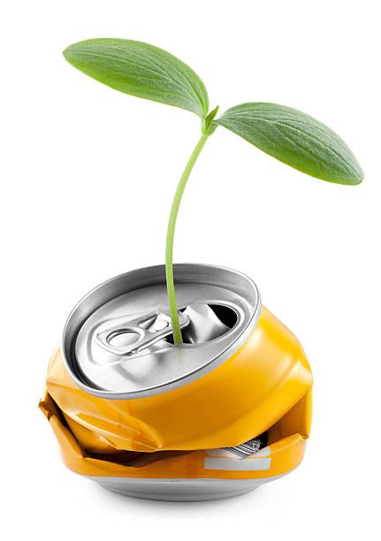 Recycling. Seedling into a can.:スマホ壁紙(壁紙.com)