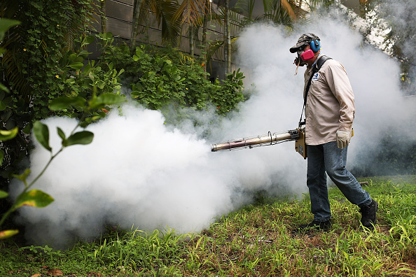 虫・昆虫「Miami Beach Sprays To Combat Zika Virus Carrying Mosquitoes」:写真・画像(17)[壁紙.com]