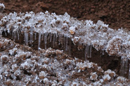 Frost「Frozen Ground」:スマホ壁紙(10)