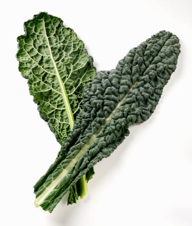 Cabbage「Cavolo nero」:スマホ壁紙(14)