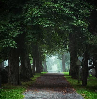Funeral「Cemetery Lane」:スマホ壁紙(12)